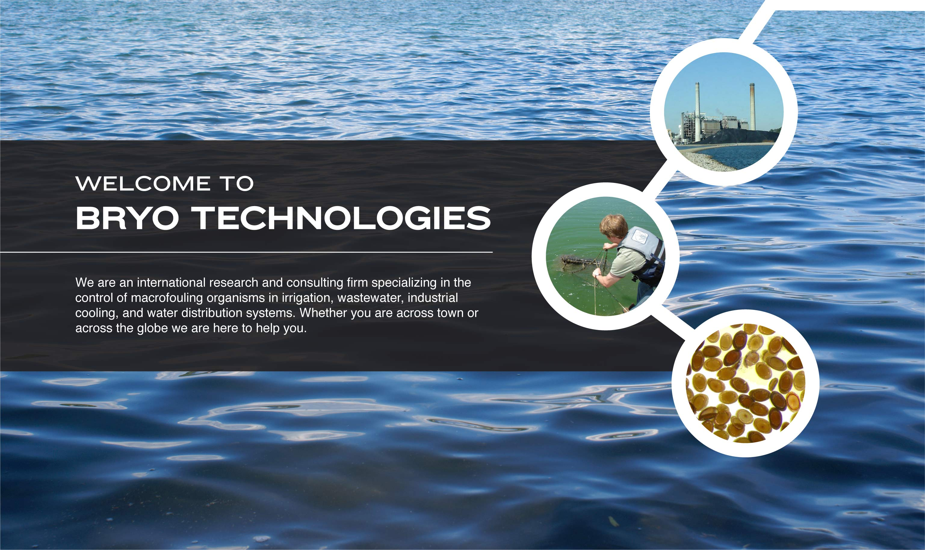 WELCOME TO BRYO TECHNOLOGIES : We are an international research and consulting firm specializing in the control of macrofouling organisms in irrigation, wastewater, industrial cooling, and water distribution systems. Whether you are across town or across the globe we are here to help you.
