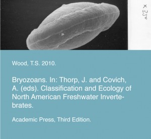 Wood, T.S. 2010. Bryozoans. In: Thorp, J. and Covich, A. (eds). Classification and Ecology of North American Freshwater Invertebrates. Academic Press, Third Edition.