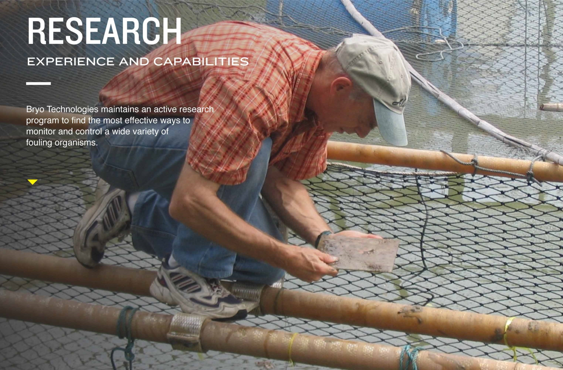 Research. Experience and Capabilities. Bryo Technologies maintains an active research program to find the most effective ways to monitor and control a wide variety of fouling organisms.
