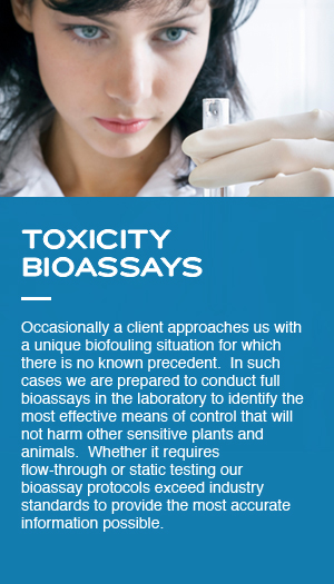 Toxicity Bioassays: Occasionally a client approaches us with a unique biofouling situation for which there is no known precedent.  In such cases we are prepared to conduct full bioassays in the laboratory to identify the most effective means of control that will not harm other sensitive plants and animals.  Whether it requires flow-through or static testing our bioassay protocols exceed industry standards to provide the most accurate information possible.